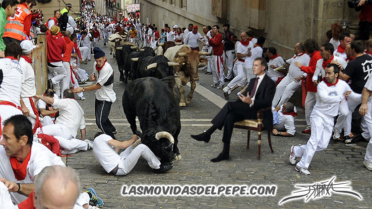 A Garcigrande's bull attacks participants during the fourth bull-run of the San Fermin Festival in Pamplona, northern Spain, on July 10, 2014. The festival is a symbol of Spanish culture that attracts thousands of tourists to watch the bull runs despite heavy condemnation from animal rights groups.  AFP PHOTO/ RAFA RIVAS